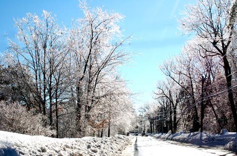 Ice_storm_2008